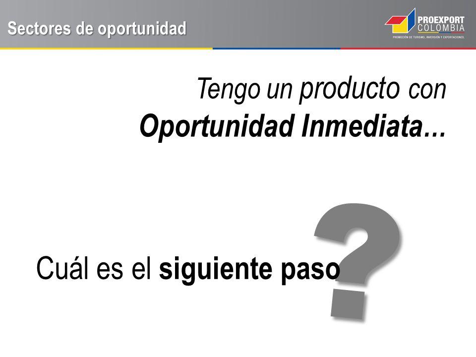 Sectores de oportunidad Defina su modelo de negocio Algunos ejemplos a continuación…