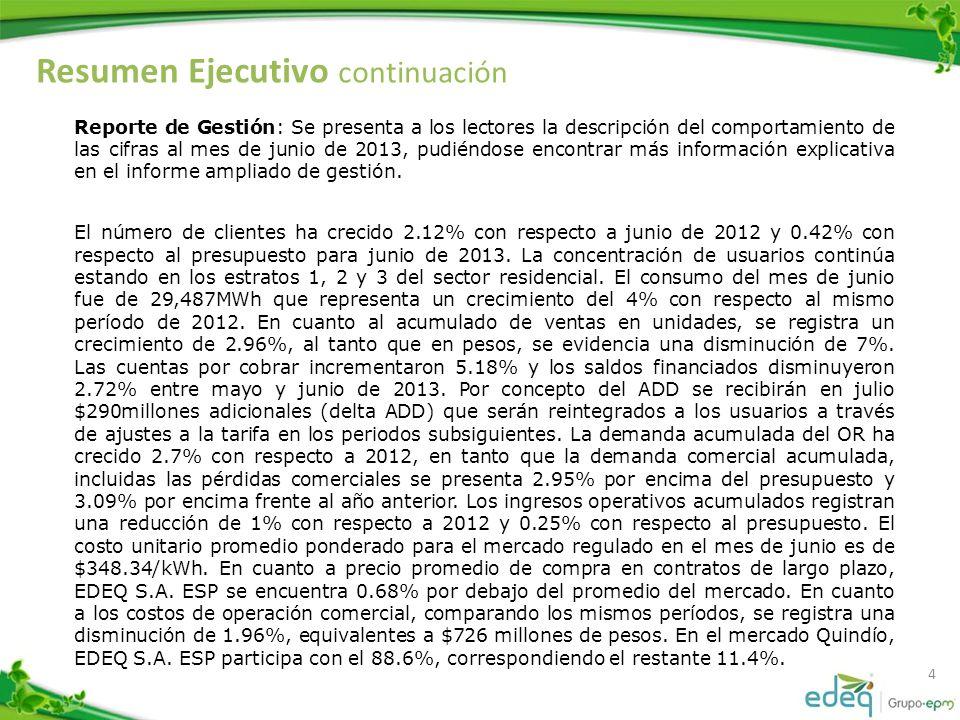 4 Reporte de Gestión: Se presenta a los lectores la descripción del comportamiento de las cifras al mes de junio de 2013, pudiéndose encontrar más información explicativa en el informe ampliado de gestión.