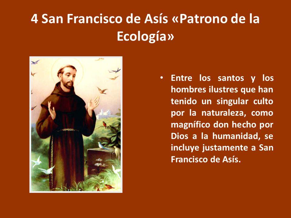 4 San Francisco de Asís «Patrono de la Ecología» Entre los santos y los hombres ilustres que han tenido un singular culto por la naturaleza, como magnífico don hecho por Dios a la humanidad, se incluye justamente a San Francisco de Asís.