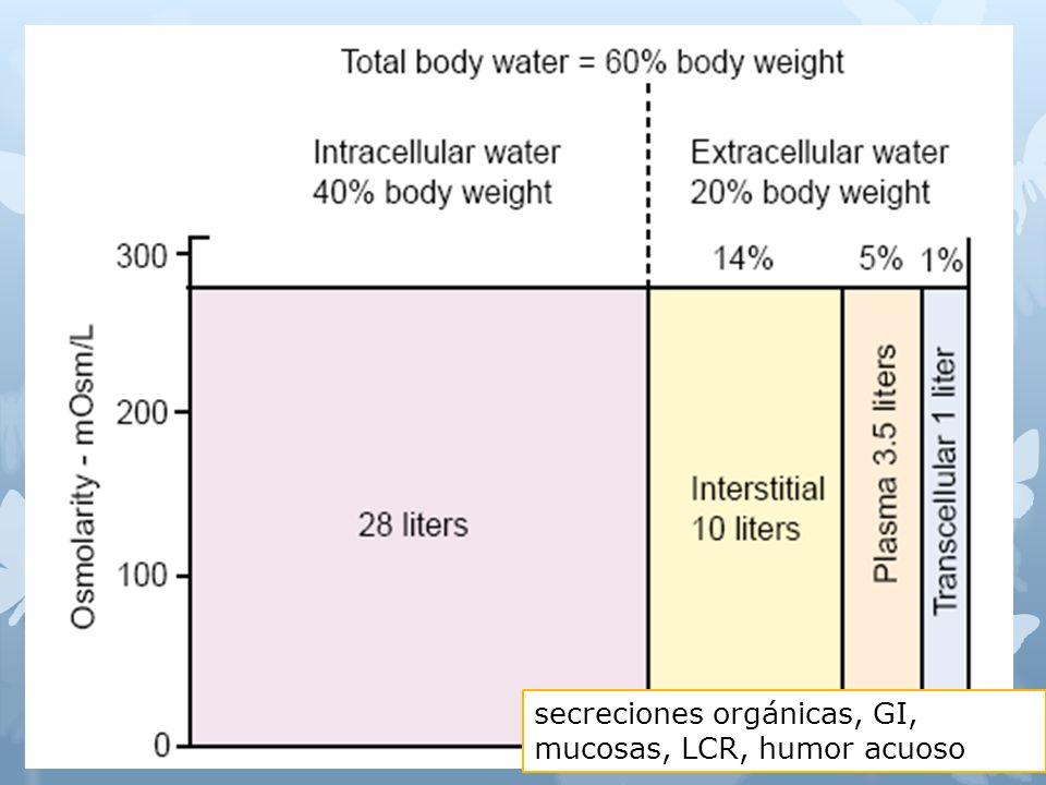 secreciones orgánicas, GI, mucosas, LCR, humor acuoso