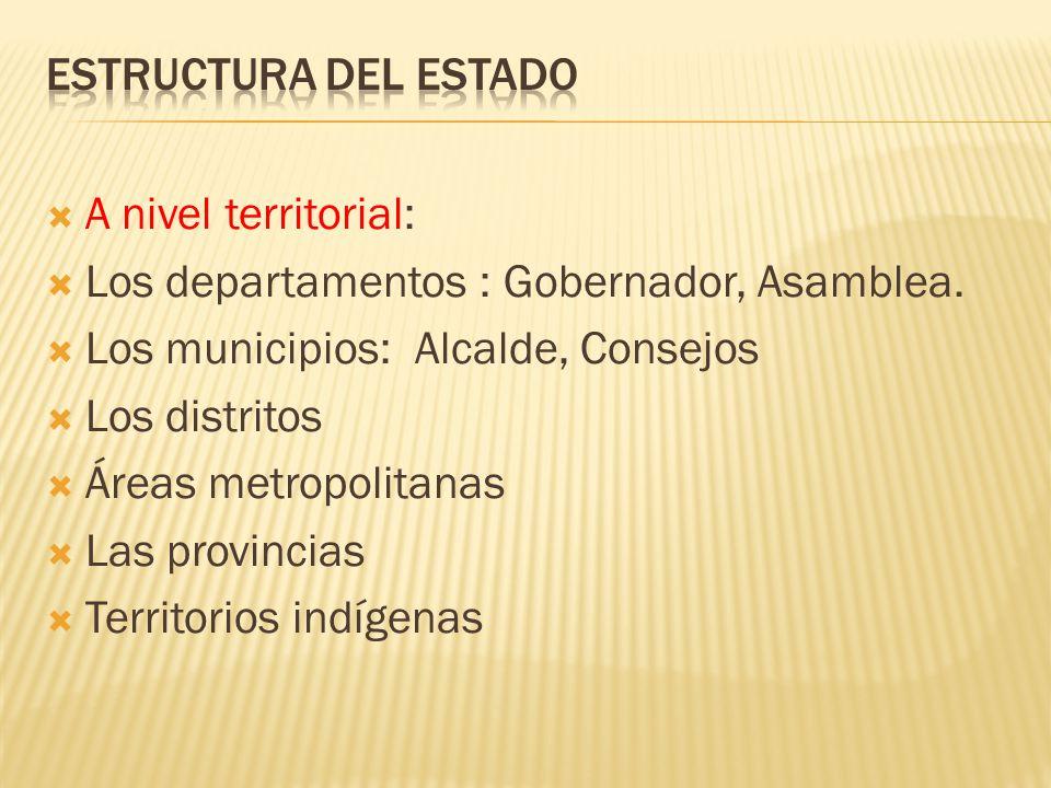 A nivel territorial: Los departamentos : Gobernador, Asamblea. Los municipios: Alcalde, Consejos Los distritos Áreas metropolitanas Las provincias Ter