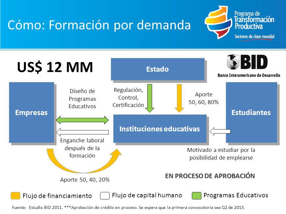 Flujo de financiamiento Flujo de capital humanoProgramas Educativos Empresas Enganche laboral después de la formación Estado Aporte 50, 60, 80% Estudiantes Instituciones educativas Regulación, Control, Certificación Diseño de Programas Educativos Aporte 50, 40, 20% Fuente: Estudio BID 2011.