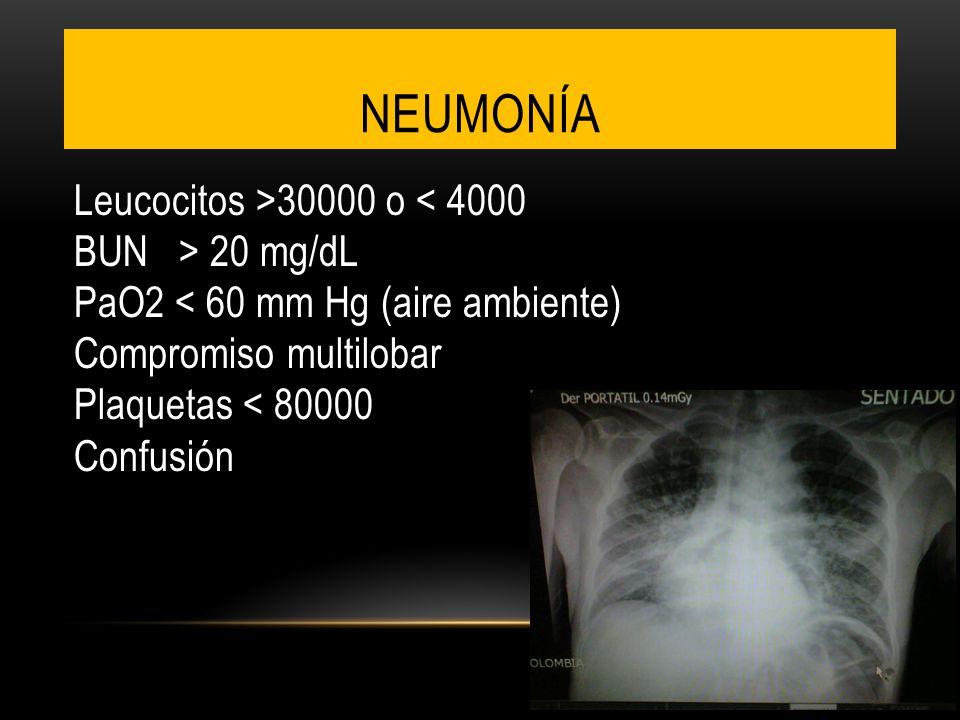 NEUMONÍA Leucocitos >30000 o 20 mg/dL PaO2 < 60 mm Hg (aire ambiente) Compromiso multilobar Plaquetas < 80000 Confusión