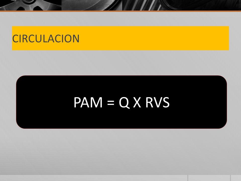 CIRCULACION PAM = Q X RVS