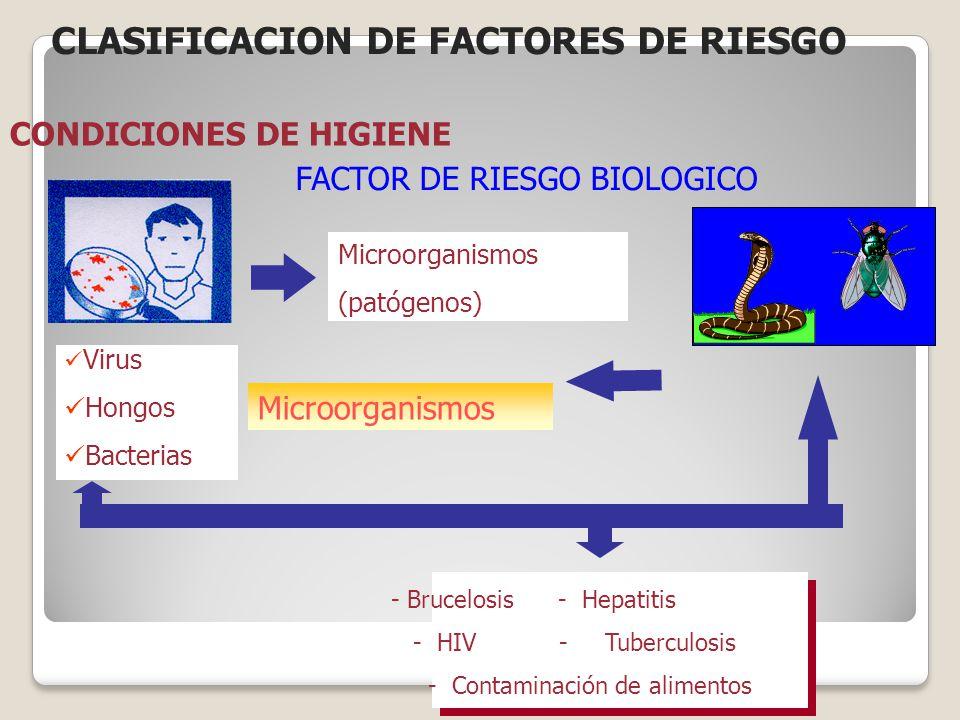 FACTOR DE RIESGO BIOLOGICO Microorganismos (patógenos) Microorganismos Virus Hongos Bacterias - Brucelosis - Hepatitis - HIV - Tuberculosis - Contamin