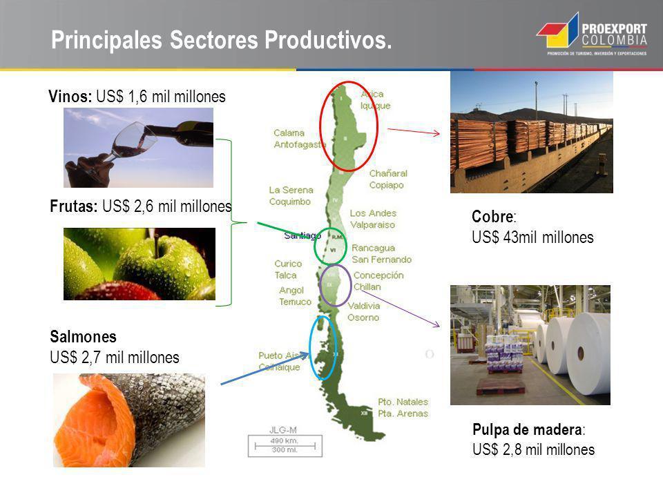 Principales Sectores Productivos. Vinos: US$ 1,6 mil millones Cobre : US$ 43mil millones Salmones US$ 2,7 mil millones Pulpa de madera : US$ 2,8 mil m
