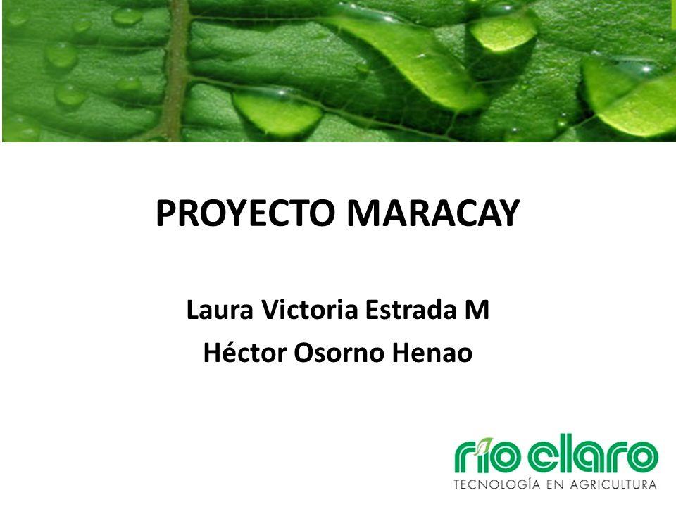 PROYECTO MARACAY Laura Victoria Estrada M Héctor Osorno Henao
