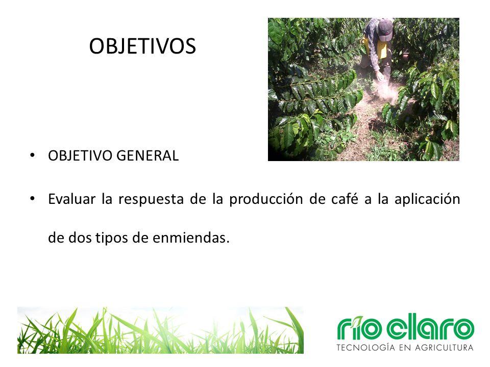 OBJETIVOS OBJETIVO GENERAL Evaluar la respuesta de la producción de café a la aplicación de dos tipos de enmiendas.