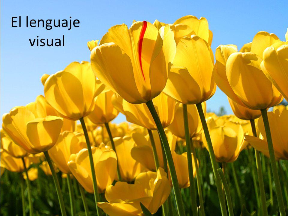 Las imágenes visuales pueden estar constituidas, en su nivel más elemental, por color, forma y movimiento.