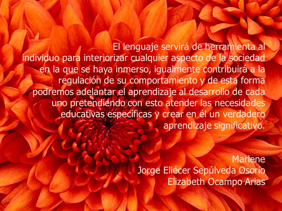 El lenguaje servirá de herramienta al individuo para interiorizar cualquier aspecto de la sociedad en la que se haya inmerso, igualmente contribuirá a
