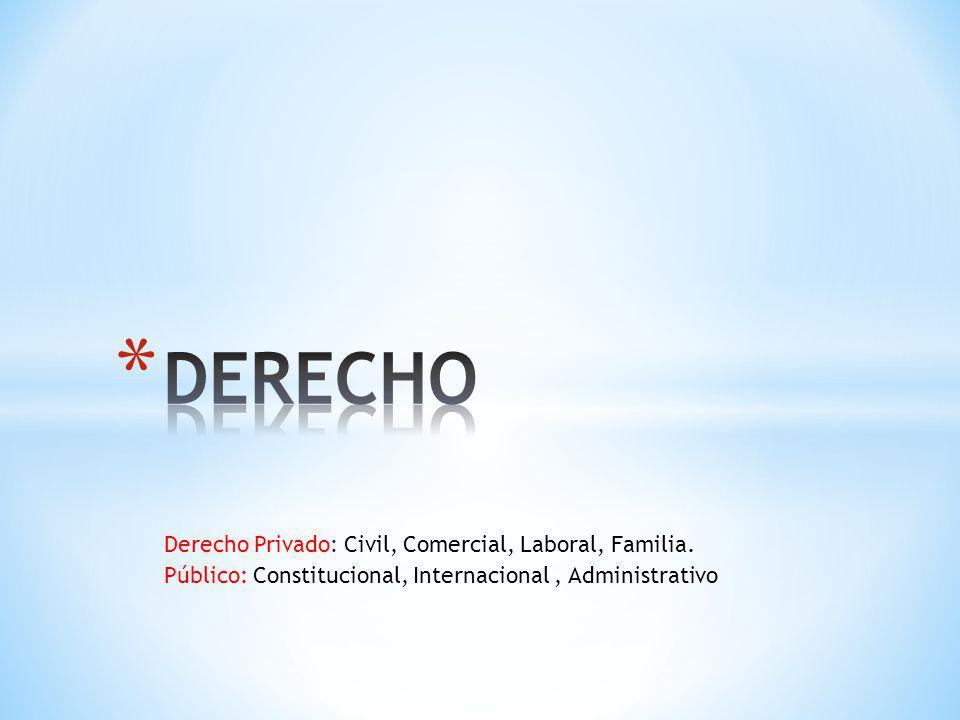 Derecho Privado: Civil, Comercial, Laboral, Familia. Público: Constitucional, Internacional, Administrativo