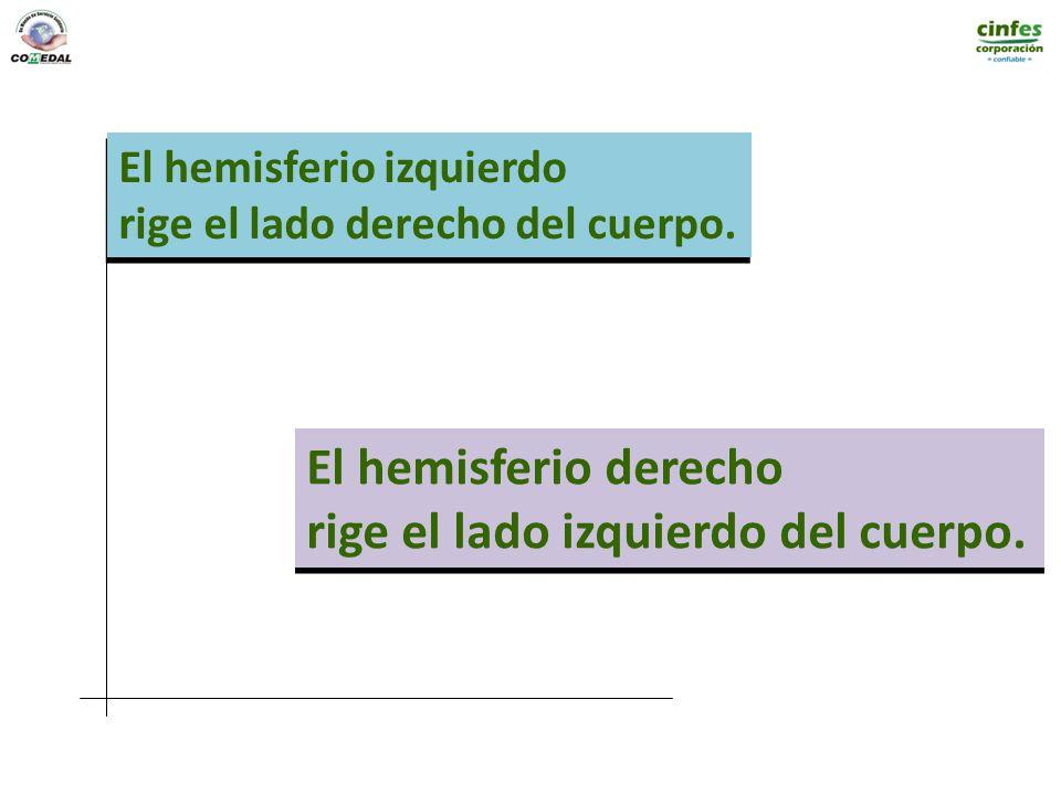 El hemisferio izquierdo rige el lado derecho del cuerpo. El hemisferio izquierdo rige el lado derecho del cuerpo. El hemisferio derecho rige el lado i