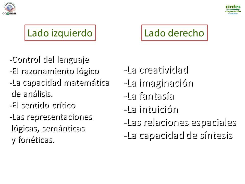 Lado izquierdoLado derecho -Control del lenguaje -El razonamiento lógico -La capacidad matemática de análisis. -El sentido crítico -Las representacion