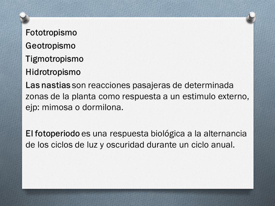 Fototropismo Geotropismo Tigmotropismo Hidrotropismo Las nastias son reacciones pasajeras de determinada zonas de la planta como respuesta a un estimu