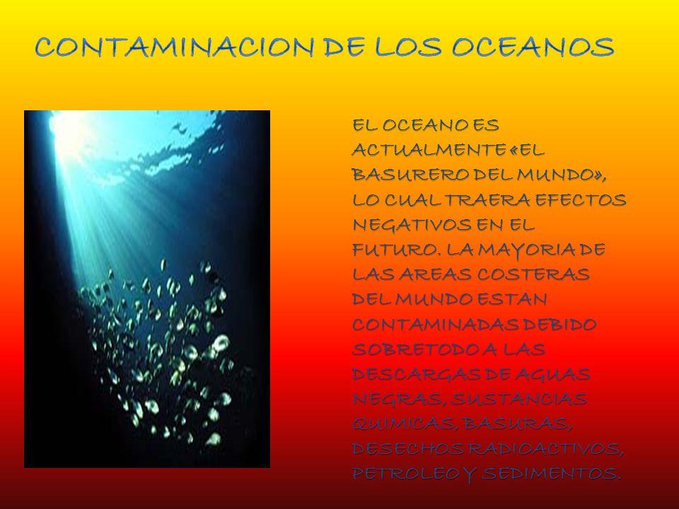 EL OCEANO ES ACTUALMENTE «EL BASURERO DEL MUNDO», LO CUAL TRAERA EFECTOS NEGATIVOS EN EL FUTURO.