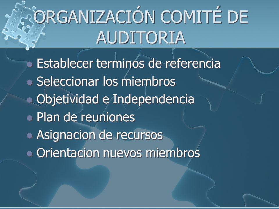 ORGANIZACIÓN COMITÉ DE AUDITORIA Establecer terminos de referencia Seleccionar los miembros Objetividad e Independencia Plan de reuniones Asignacion d