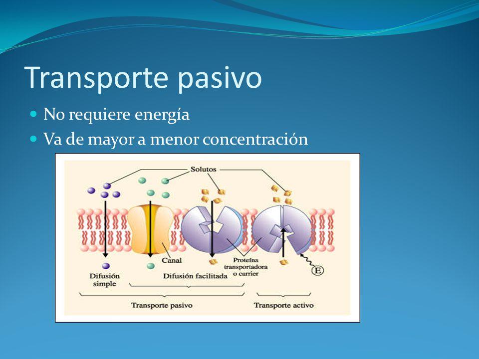 Transporte pasivo No requiere energía Va de mayor a menor concentración