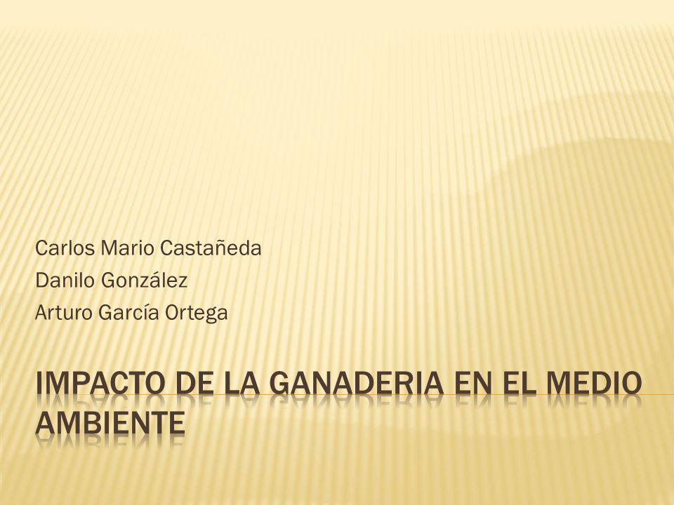 Carlos Mario Castañeda Danilo González Arturo García Ortega