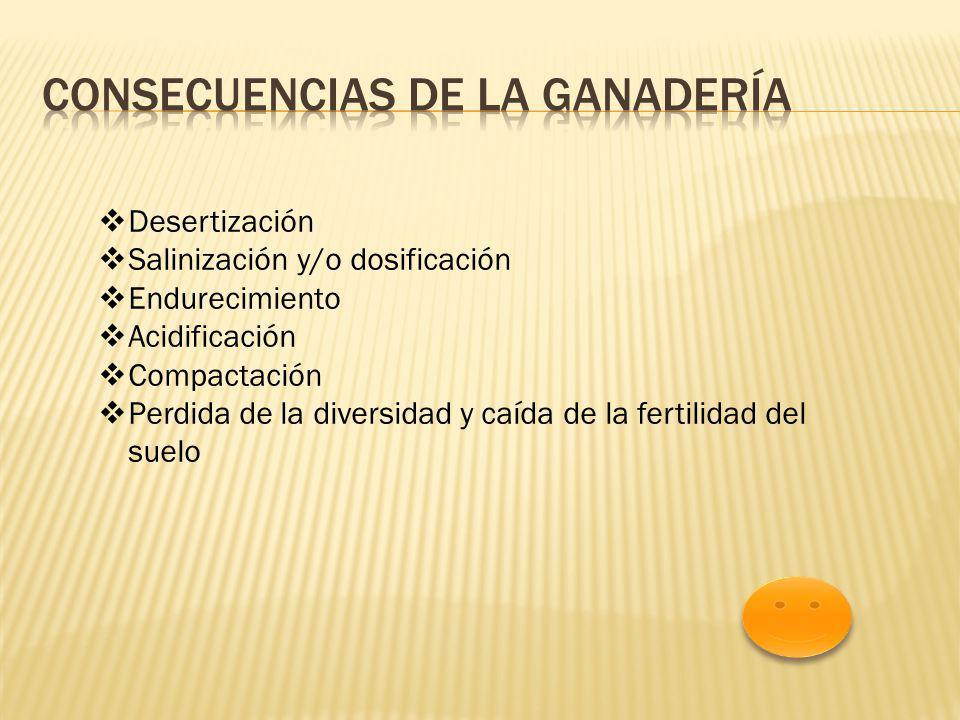 Desertización Salinización y/o dosificación Endurecimiento Acidificación Compactación Perdida de la diversidad y caída de la fertilidad del suelo