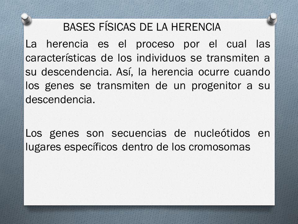 BASES FÍSICAS DE LA HERENCIA La herencia es el proceso por el cual las características de los individuos se transmiten a su descendencia.