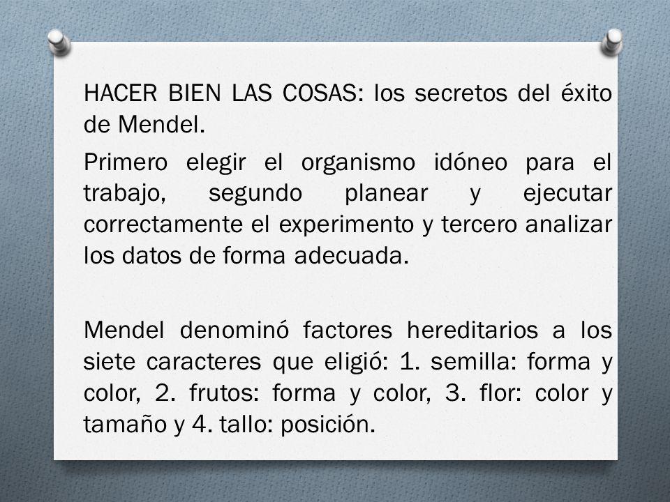 HACER BIEN LAS COSAS: los secretos del éxito de Mendel.