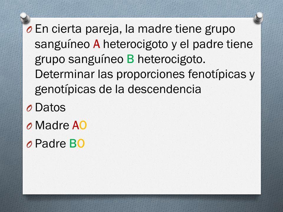 O En cierta pareja, la madre tiene grupo sanguíneo A heterocigoto y el padre tiene grupo sanguíneo B heterocigoto.