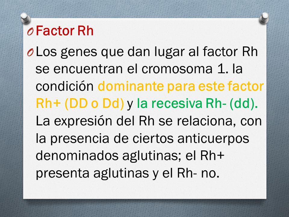 O Factor Rh O Los genes que dan lugar al factor Rh se encuentran el cromosoma 1.