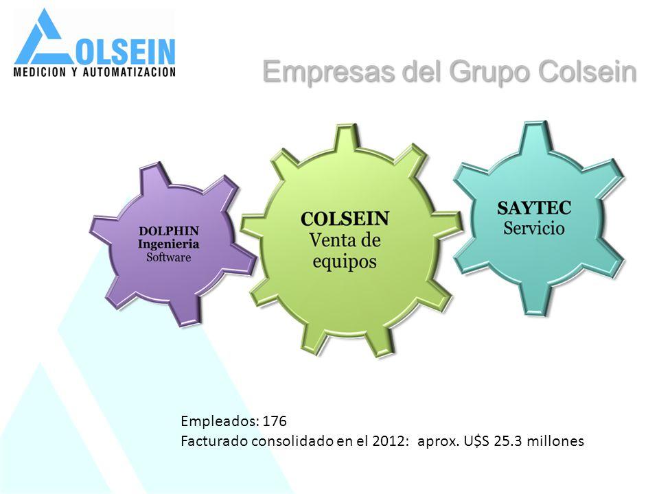 Empleados: 176 Facturado consolidado en el 2012: aprox. U$S 25.3 millones Empresas del Grupo Colsein