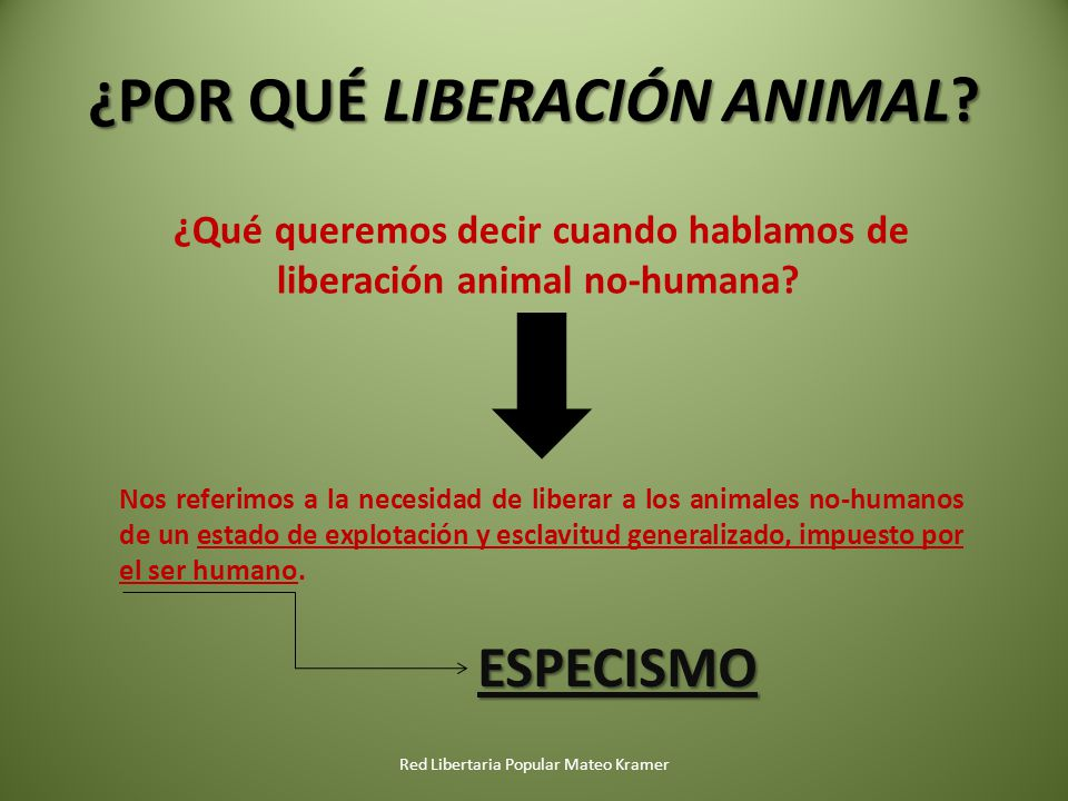 ¿POR QUÉ LIBERACIÓN ANIMAL? Red Libertaria Popular Mateo Kramer ¿Qué queremos decir cuando hablamos de liberación animal no-humana? Nos referimos a la