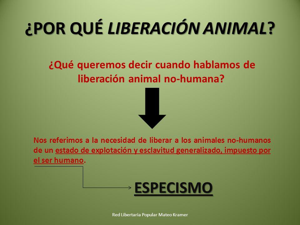 ¿POR QUÉ LIBERACIÓN ANIMAL.