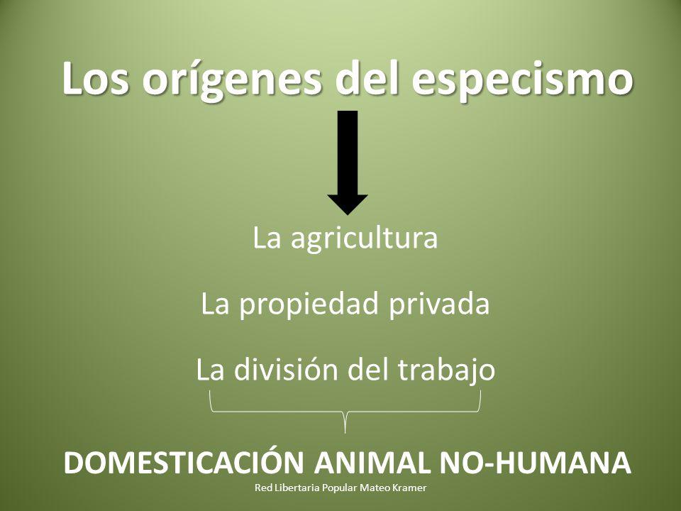 Red Libertaria Popular Mateo Kramer Los orígenes del especismo La agricultura La propiedad privada La división del trabajo DOMESTICACIÓN ANIMAL NO-HUMANA