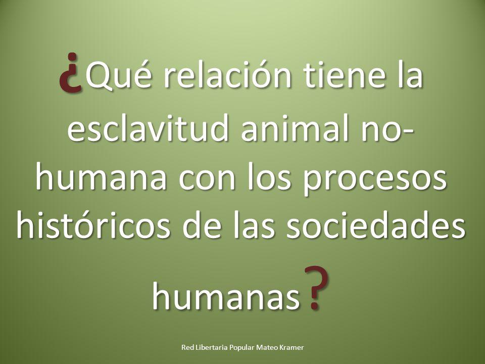 Red Libertaria Popular Mateo Kramer ¿ Qué relación tiene la esclavitud animal no- humana con los procesos históricos de las sociedades humanas ?