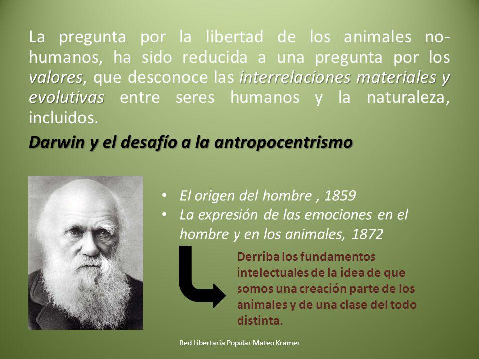 valoresinterrelaciones materiales y evolutivas La pregunta por la libertad de los animales no- humanos, ha sido reducida a una pregunta por los valore