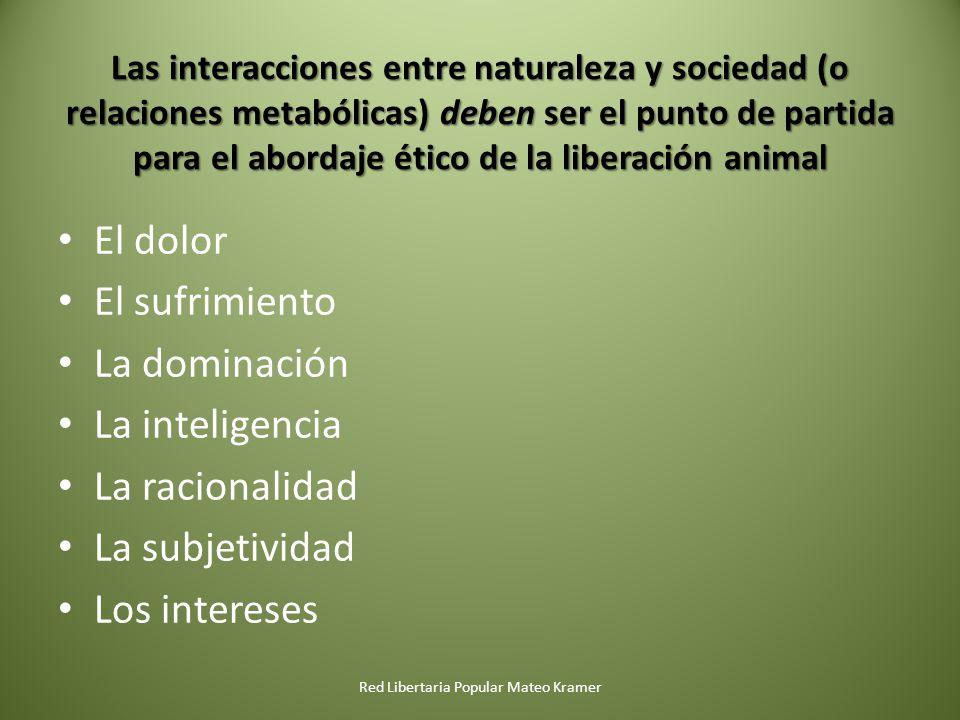 Las interacciones entre naturaleza y sociedad (o relaciones metabólicas) deben ser el punto de partida para el abordaje ético de la liberación animal