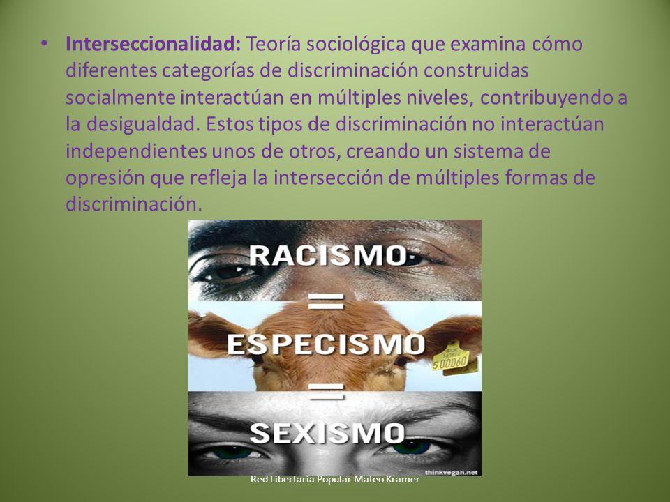 Red Libertaria Popular Mateo Kramer Interseccionalidad: Teoría sociológica que examina cómo diferentes categorías de discriminación construidas socialmente interactúan en múltiples niveles, contribuyendo a la desigualdad.