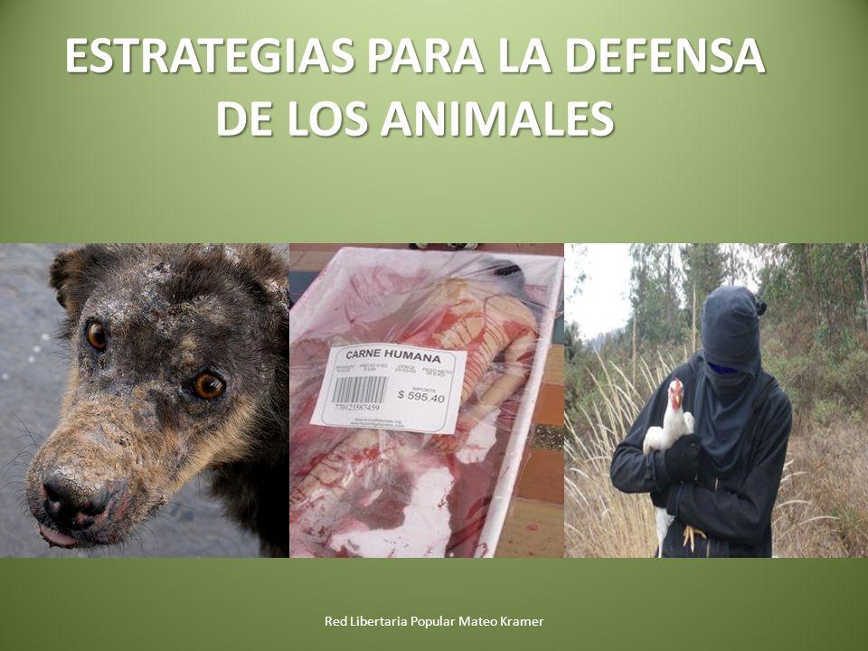 Red Libertaria Popular Mateo Kramer ESTRATEGIAS PARA LA DEFENSA DE LOS ANIMALES