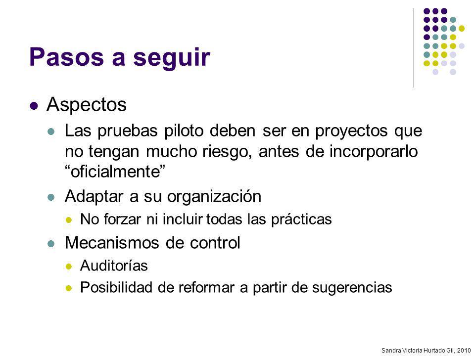 Sandra Victoria Hurtado Gil, 2010 Pasos a seguir Aspectos Las pruebas piloto deben ser en proyectos que no tengan mucho riesgo, antes de incorporarlo