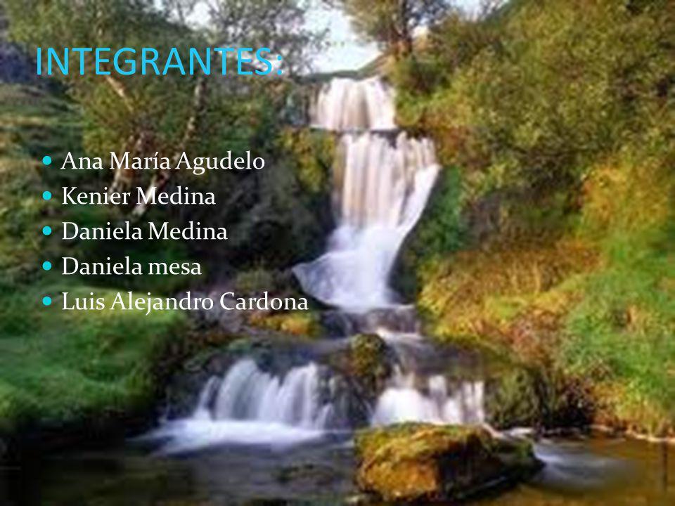 INTEGRANTES: Ana María Agudelo Kenier Medina Daniela Medina Daniela mesa Luis Alejandro Cardona