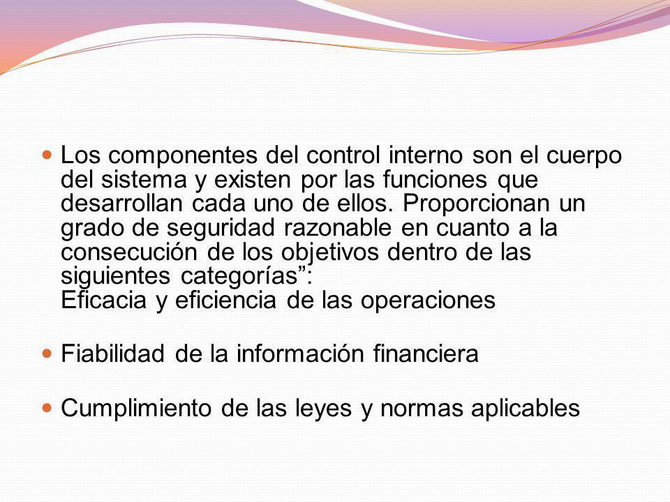 Los componentes del control interno son el cuerpo del sistema y existen por las funciones que desarrollan cada uno de ellos. Proporcionan un grado de
