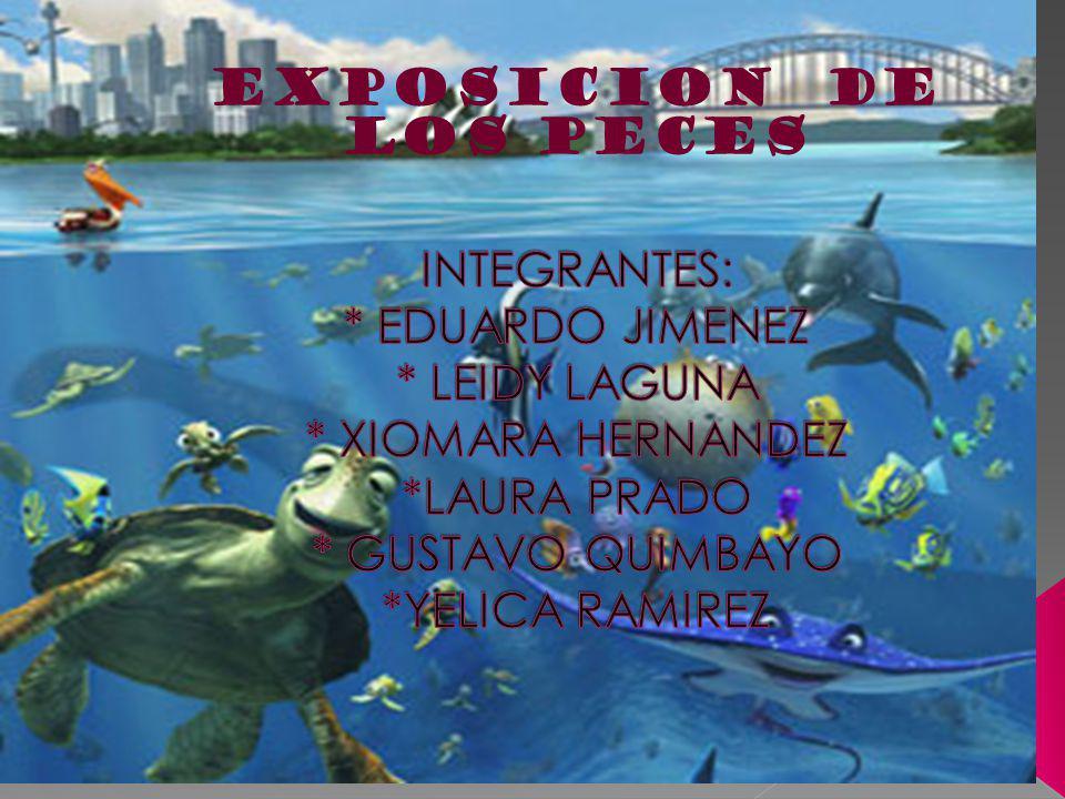 LOS PECES Los peces (son animales vertebrados acuáticos, generalmente ectotérmicos, (término aplicado a ciertos animales con temperatura corporal variable.