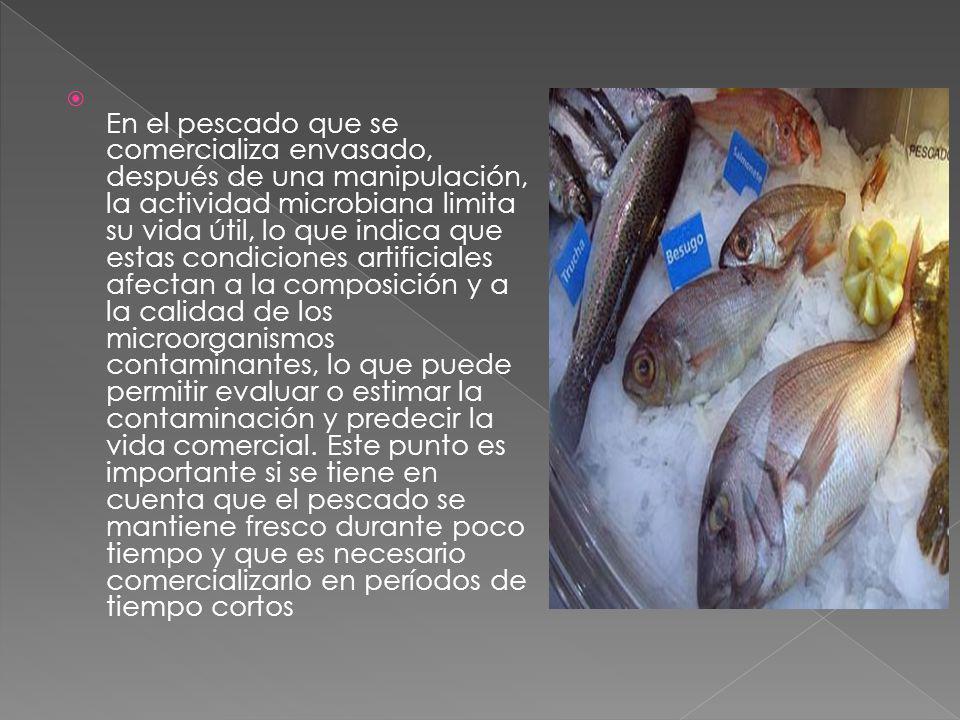 En el pescado que se comercializa envasado, después de una manipulación, la actividad microbiana limita su vida útil, lo que indica que estas condicio