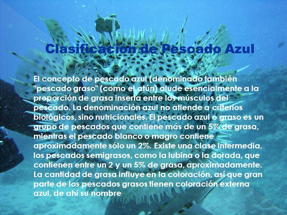Clasificación de Pescado Azul El concepto de pescado azul (denominado también
