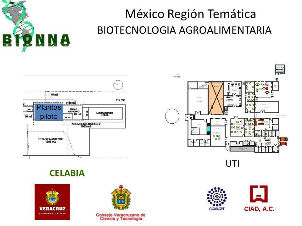 México Región Temática BIOTECNOLOGIA AGROALIMENTARIA CELABIA UTI Plantas piloto
