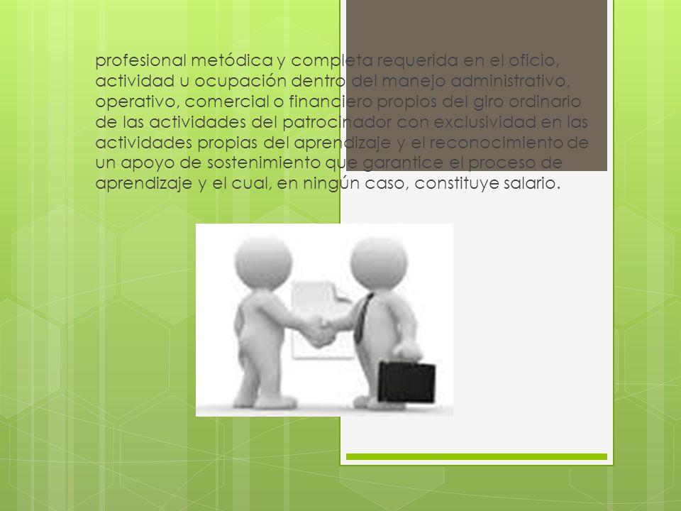 profesional metódica y completa requerida en el oficio, actividad u ocupación dentro del manejo administrativo, operativo, comercial o financiero prop