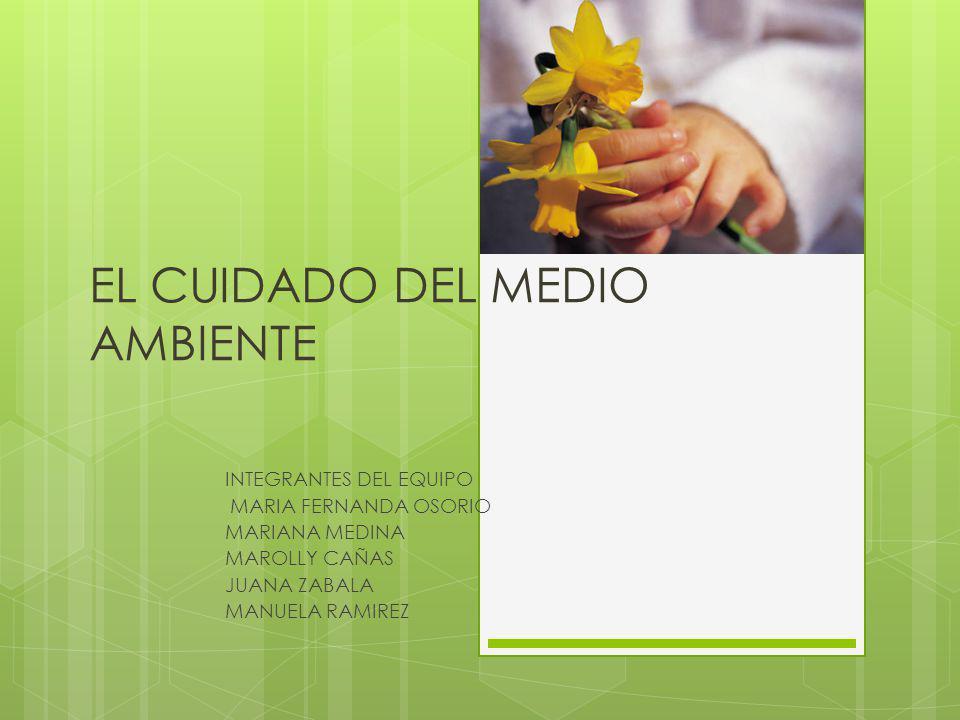 EL CUIDADO DEL MEDIO AMBIENTE INTEGRANTES DEL EQUIPO MARIA FERNANDA OSORIO MARIANA MEDINA MAROLLY CAÑAS JUANA ZABALA MANUELA RAMIREZ