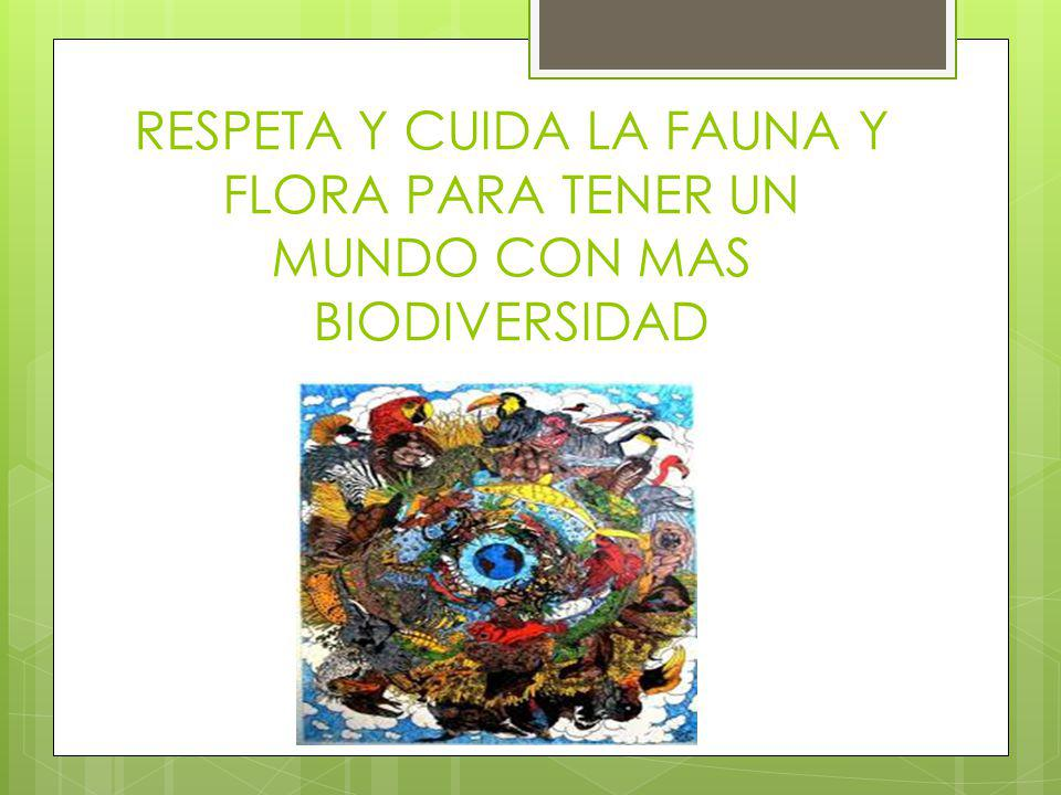 RESPETA Y CUIDA LA FAUNA Y FLORA PARA TENER UN MUNDO CON MAS BIODIVERSIDAD