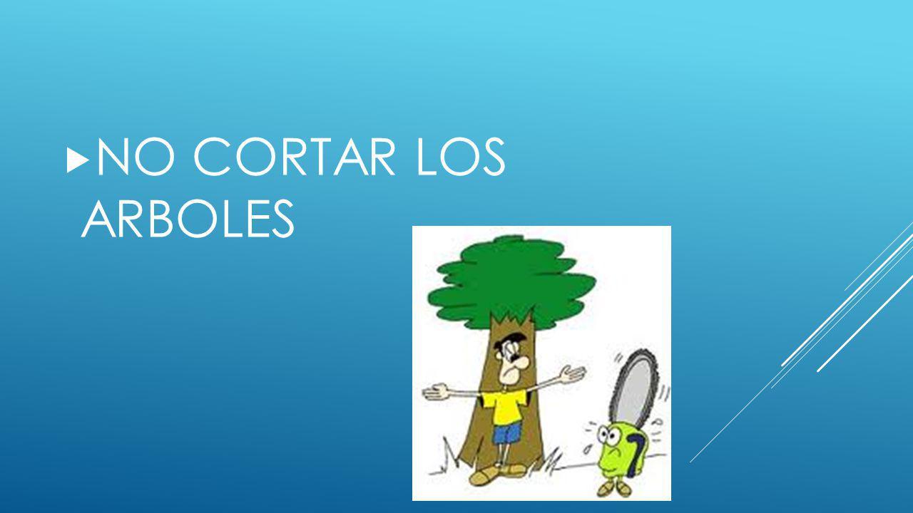 NO CORTAR LOS ARBOLES