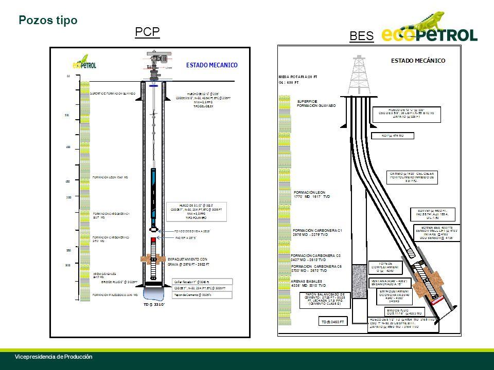 Pozos tipo Vicepresidencia de Producción PCP BES