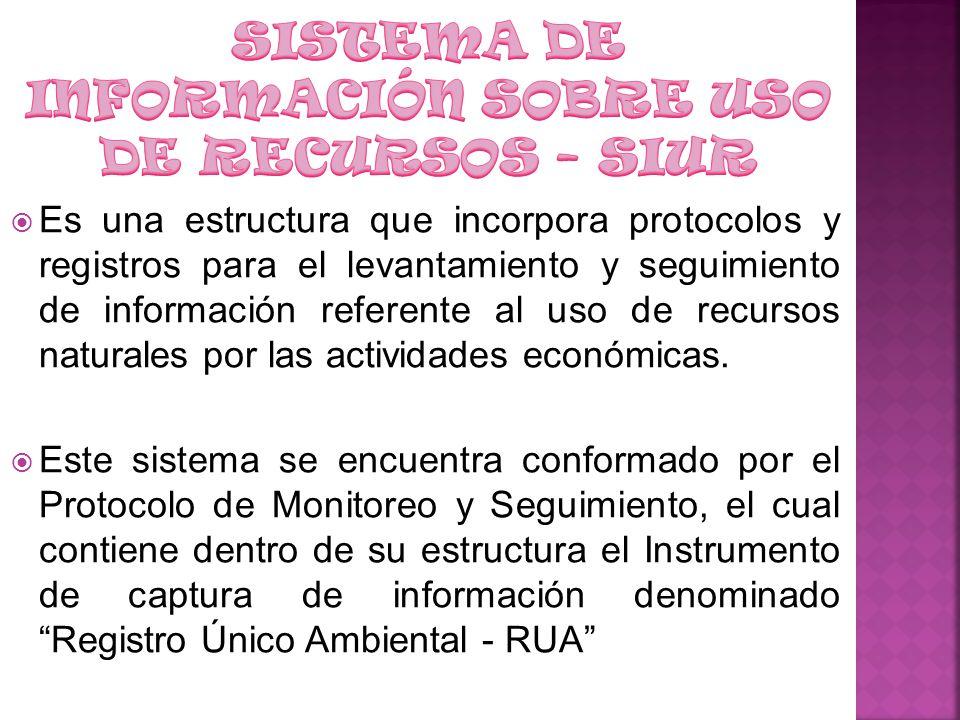 Debido a la insuficiencia de información básica en términos de cantidad, disponibilidad y calidad de los recursos naturales y del medio ambiente en Colombia se estableció la necesidad de contar con una herramienta denominada Registro Único Ambiental - RUA.