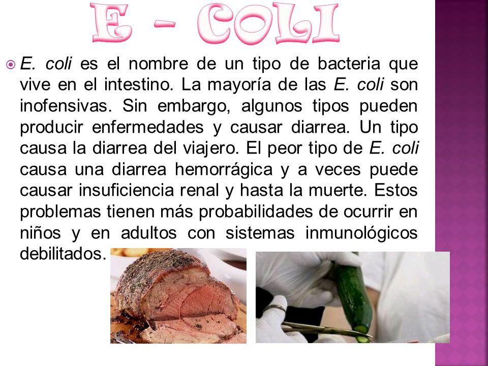 E. coli es el nombre de un tipo de bacteria que vive en el intestino. La mayoría de las E. coli son inofensivas. Sin embargo, algunos tipos pueden pro